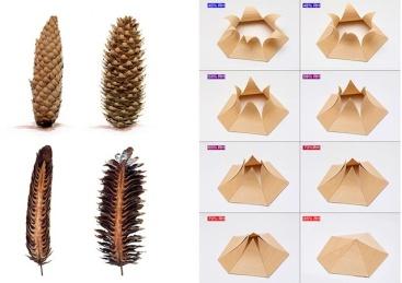 wood-cones-hygroscope