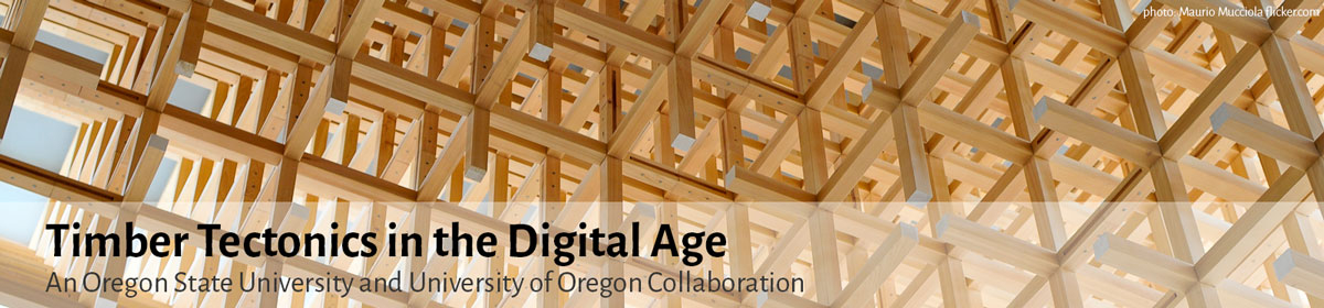 Timber Tectonics in the Digital Age